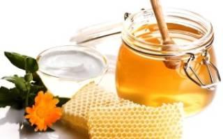 Виды продуктов пчеловодства, их использование человеком
