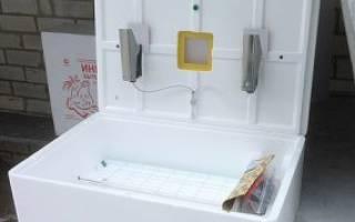 Обзор бытового инкубатора для яиц рябушка 70