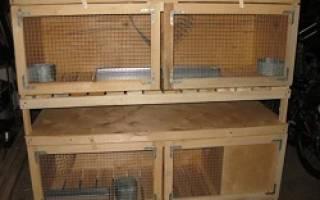 Делаем клетки кроликам своими руками с помощью сетки