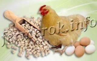 Виды комбикормов для кур, как приготовить, как скармливать