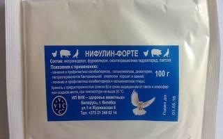 Нифулин форте для голубей: инструкция