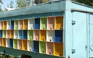 Особенности кассетного содержания пчел в павильонах берендей