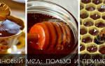 Каштановый мед: чем полезен, химический состав и противопоказания